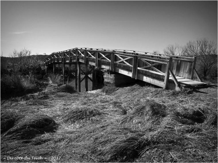 blog-p4128707-pont-prés-salés-arès-nb.jpg
