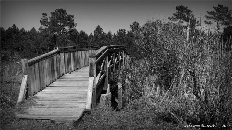 blog-p4128710-pont-prés-salés-arès-nb.jpg