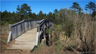 BLOG-P4128710-pont prés salés Arès