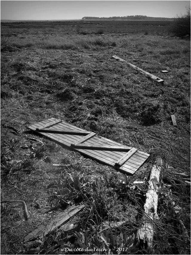 blog-p4128740-volet-et-débris-bois-prés-salés-arès-nb.jpg