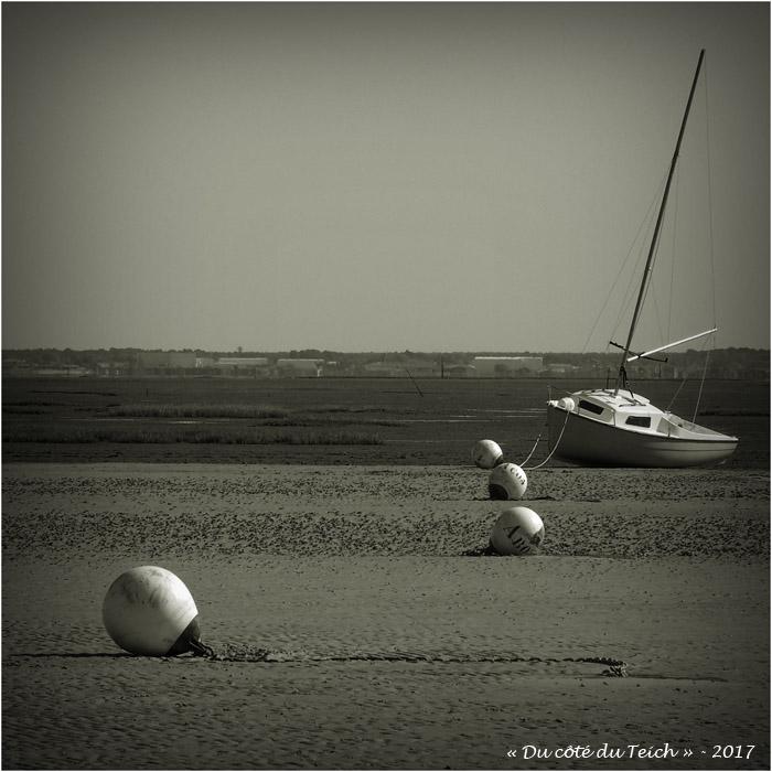 blog-p4188793-obélix-plage-taussat-nb.jpg