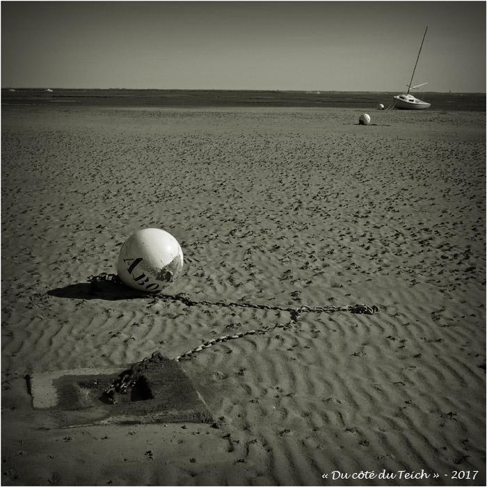 blog-p4188798-obélix-plage-taussat-nb.jpg