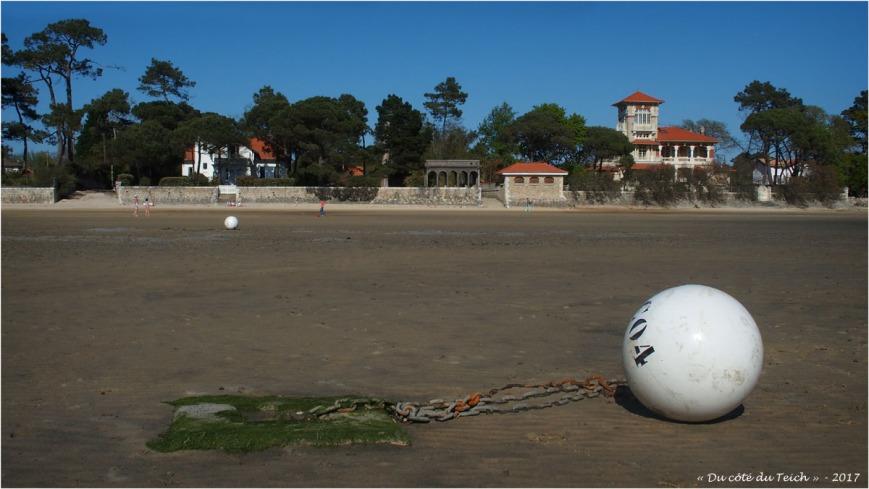 blog-p4188807-plage-taussat-marée-basse-et-villas-bagatelle-et-la-tosca.jpg