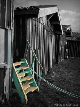 BLOG-P1063516-escalier bleu N&C