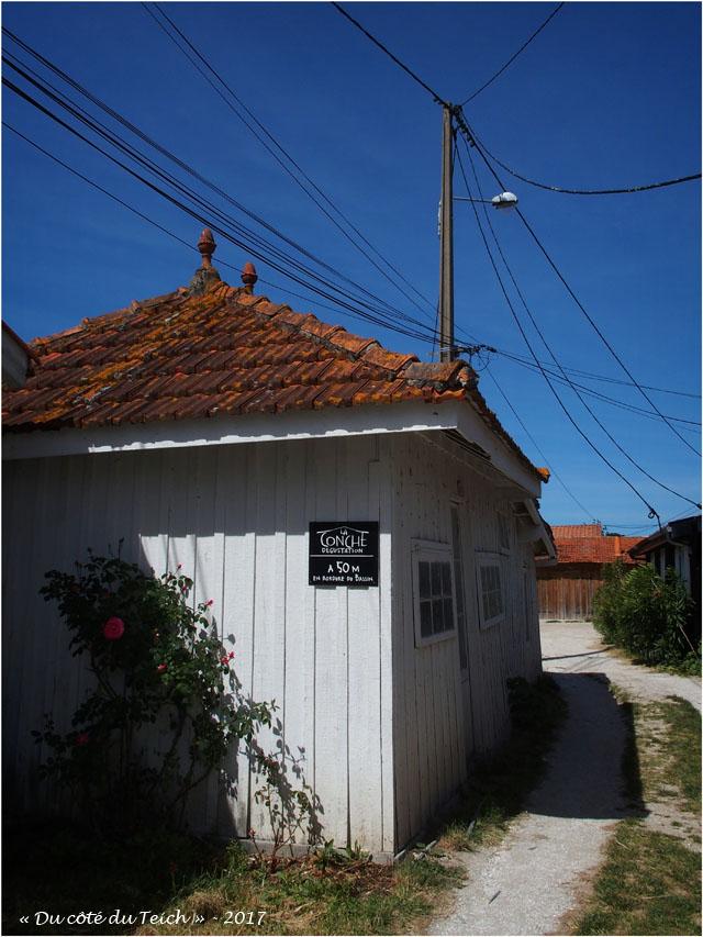 blog-p5099091-cabane-les-jacquets.jpg