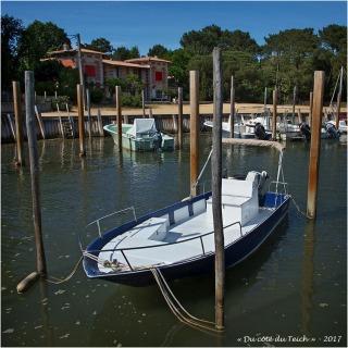 BLOG-P5099117-2-villa les hirondelles et port Grand Piquey