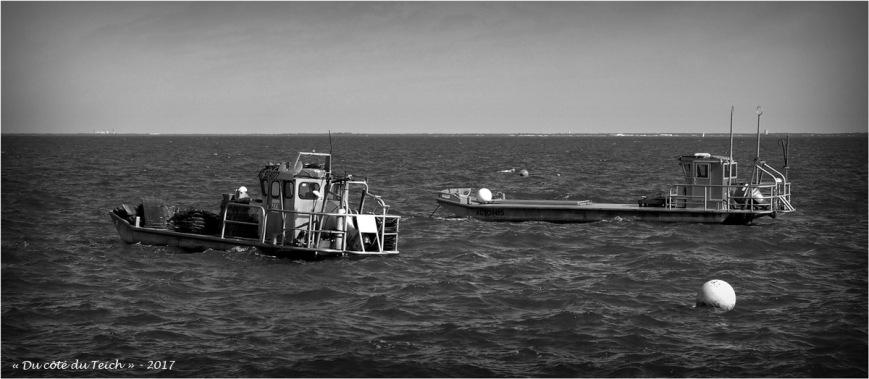 blog-p5099184-bateaux-presquile-nb.jpg