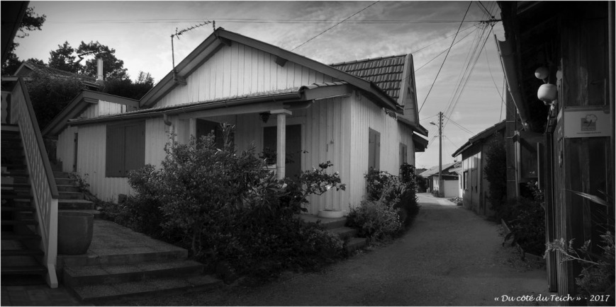 blog-p5099203-204-village-presquile-nb.jpg