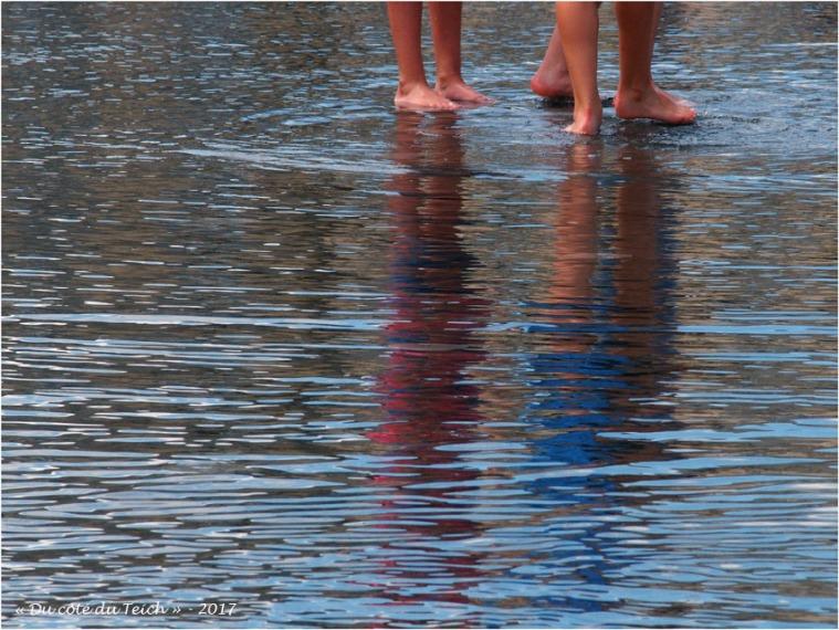 BLOG-P5309449-5 ou 6 pieds miroir d'eau Bordeaux