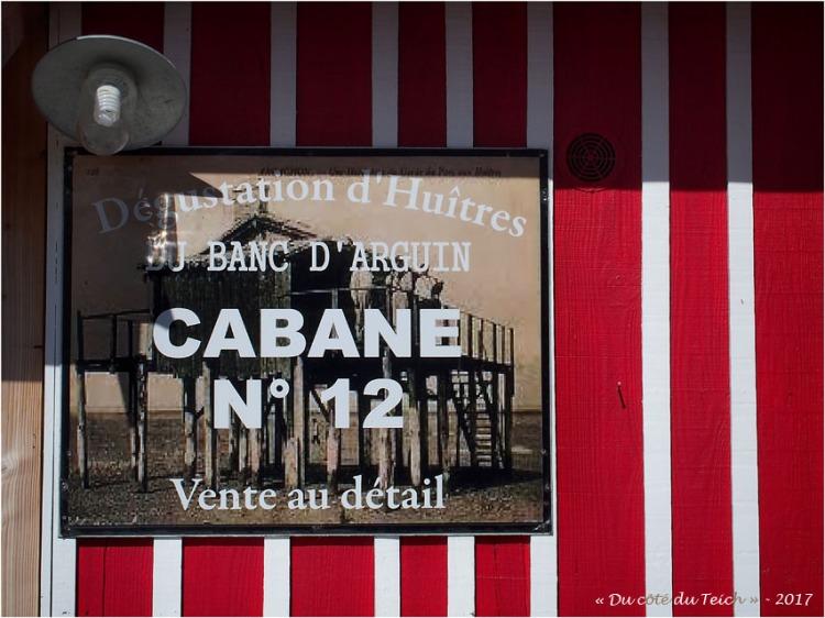 blog-p6079655-chez-baleste-cabane-12-audenge.jpg