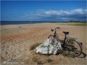 BLOG-P6099689-vélo plage du Canal