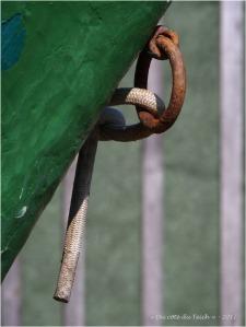 BLOG-P6099694-anneau amarrage bateau vert et cabane