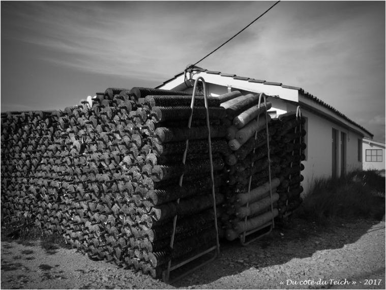 blog-p6249869-collecteurs-cabane-andernos-nb.jpg