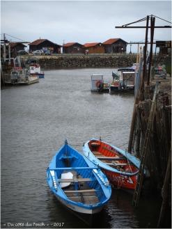BLOG-P7090111-pinassottes port Larros