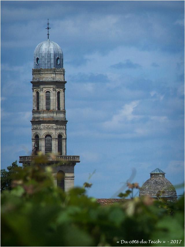 BLOG-P7110162-vigne et église St Seurin Lamarque