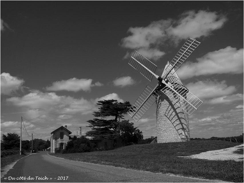 blog-p7110166-moulin-chateau-malescasse-lamarque-nb.jpg
