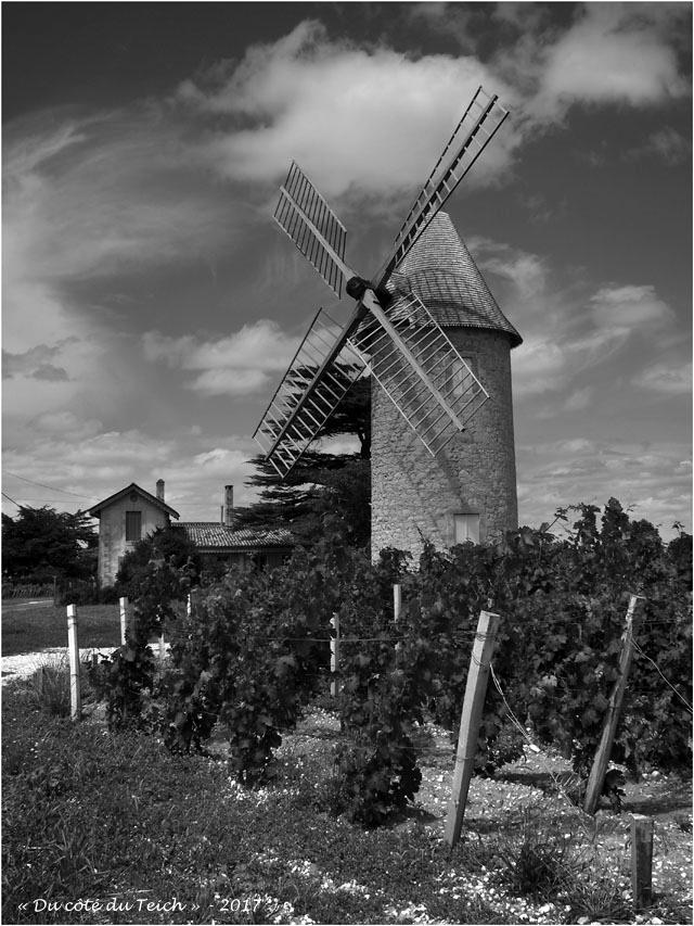 blog-p7110172-moulin-chateau-malescasse-lamarque-nb.jpg