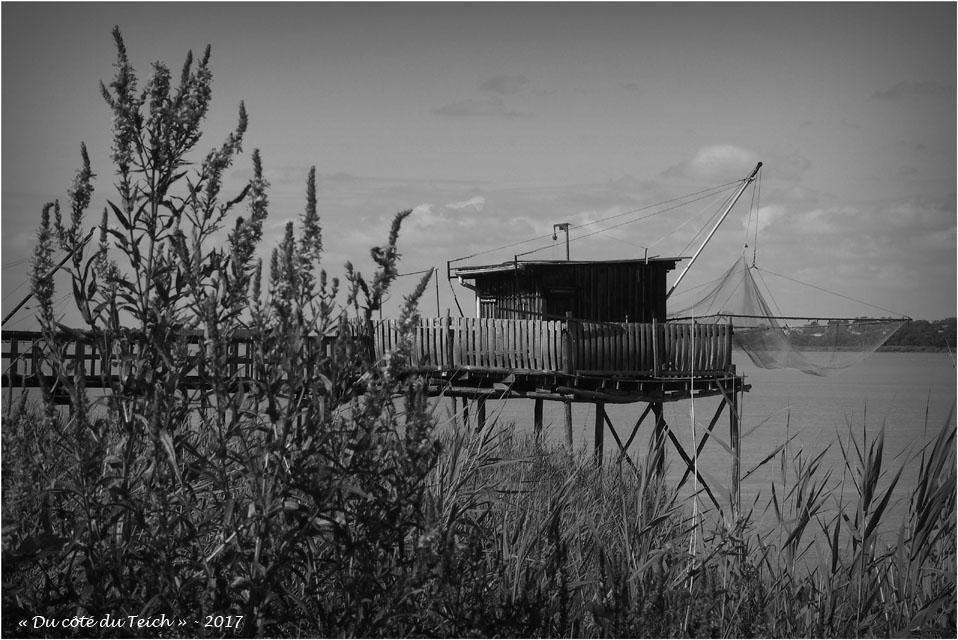 BLOG-P7110220-carrelet estuaire Gironde N&;B