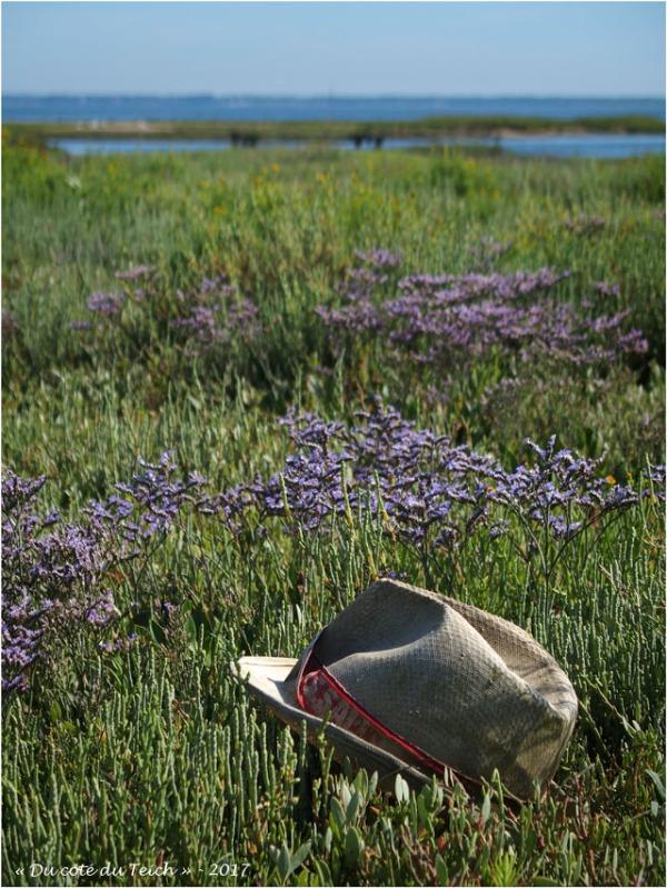 blog-p7170279-chapeau-estran-fleuri.jpg