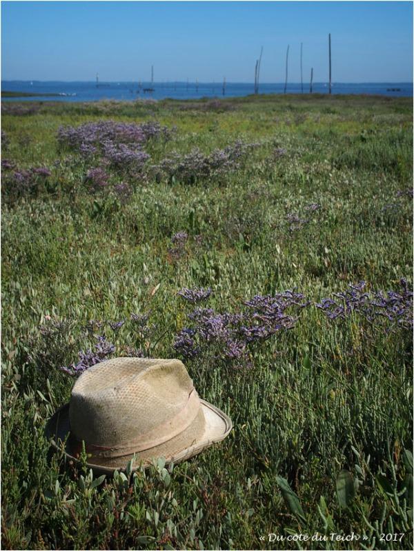 blog-p7170280-chapeau-estran-fleuri.jpg