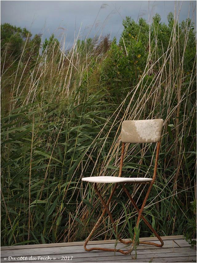 blog-p7270545-chaise-pliante-et-roseaux.jpg