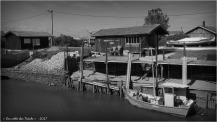 BLOG-P7280587-2-port du Canal N&B