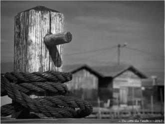 BLOG-P7280595-2-voilier asso voiles d'Antan port du Canal N&B
