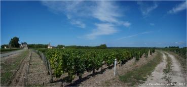 BLOG-P8010713-16-vignoble et église Margaux