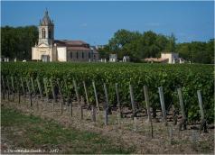 BLOG-P8010721-vignoble et église Margaux