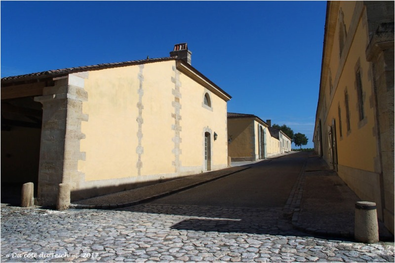 blog-p8010750-château-margaux.jpg