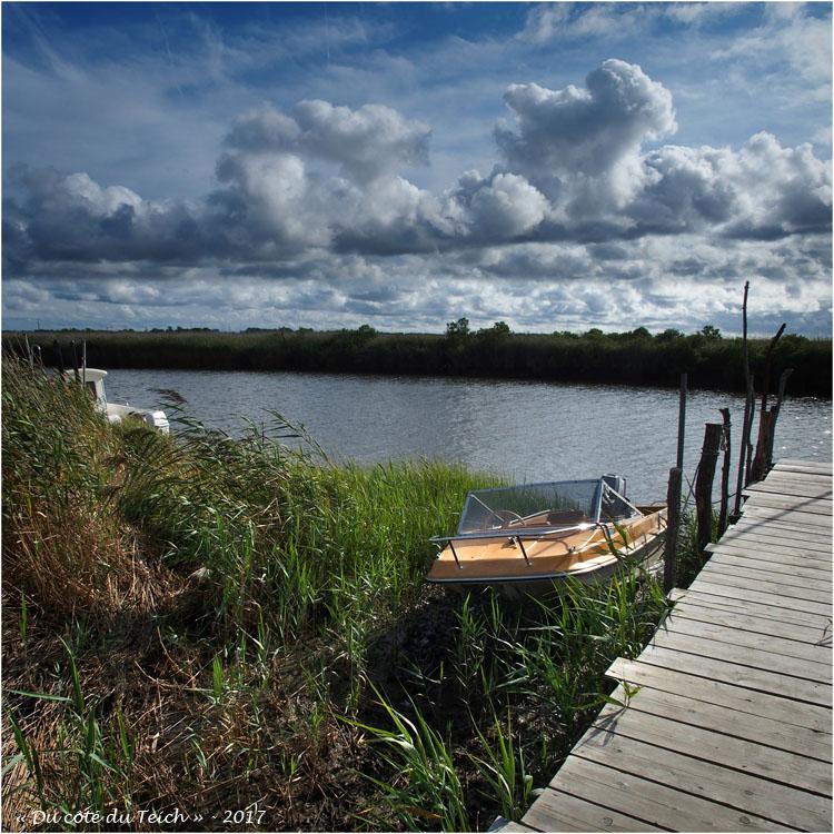 blog-p8181147-2-port-des-tuiles-leyre-maree-haute.jpg