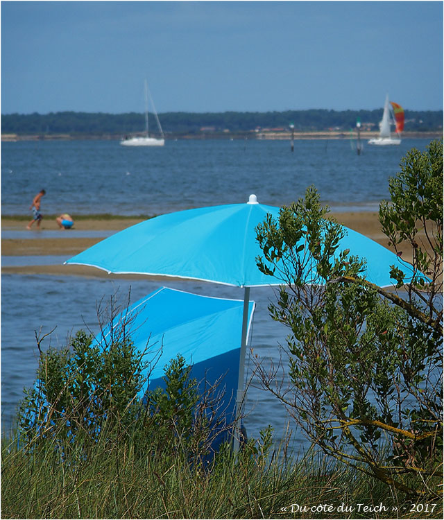 blog-p8191175-parasols-plage-du-canal.jpg