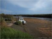 BLOG-P8291439-Leyre marée basse
