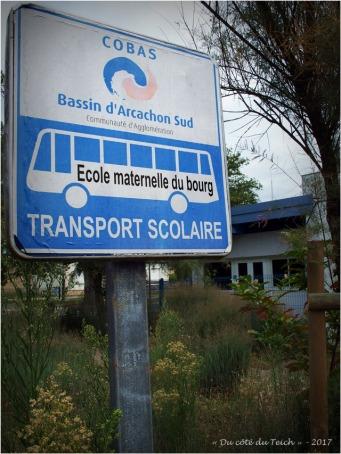BLOG-P7310662-arrêt bus ecole maternelle le Teich
