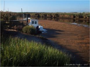 BLOG-P9021553-2-Leyre port des Tuiles matin marée basse