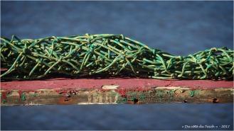 BLOG-P9021596-filet sur ponton port des Tuiles