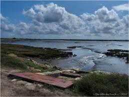 BLOG-P9121734-rivages Lanton