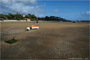 BLOG-P9141809- villas Bagatelle et la Tosca plage Taussat