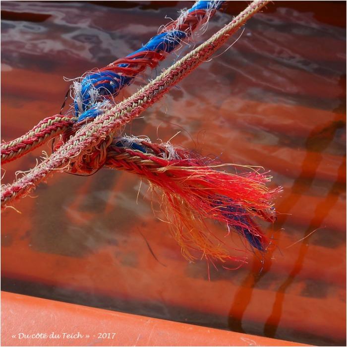 blog-p9141819-bouts-couleur-annexe.jpg