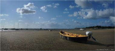 BLOG-P9141823-24-Margot plage Taussat marée basse