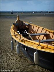 BLOG-P9141825-Margot marée basse Taussat