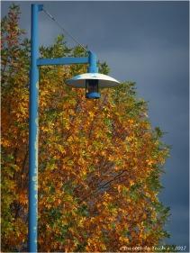 BLOG-P9262190-lumiere d'automne