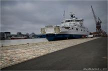 BLOG-DSC_41486-Trans Gironde l'Estuaire et la Dame bassin à flot 1 Bordeaux