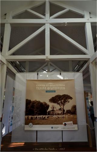 blog-dsc_41707-expo-terre-dutopie-certes-graveyron-audenge-oct-2017.jpg