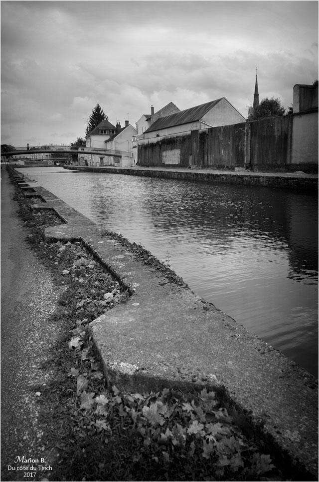 blog-dsc_41792-2-canal-de-briare-montargis-nb.jpg