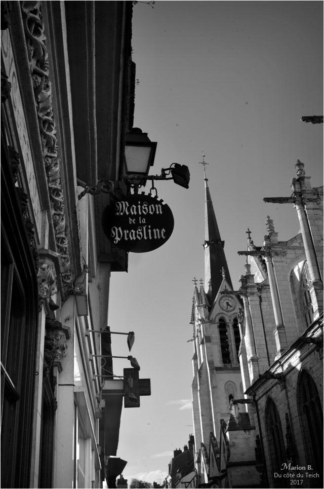 BLOG-DSC_41961-maison de la prasline et Ste Madeleine Montargis