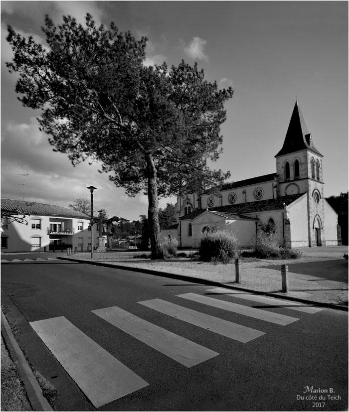 BLOG-DSC_42083-84-église St Martin Mios N&B