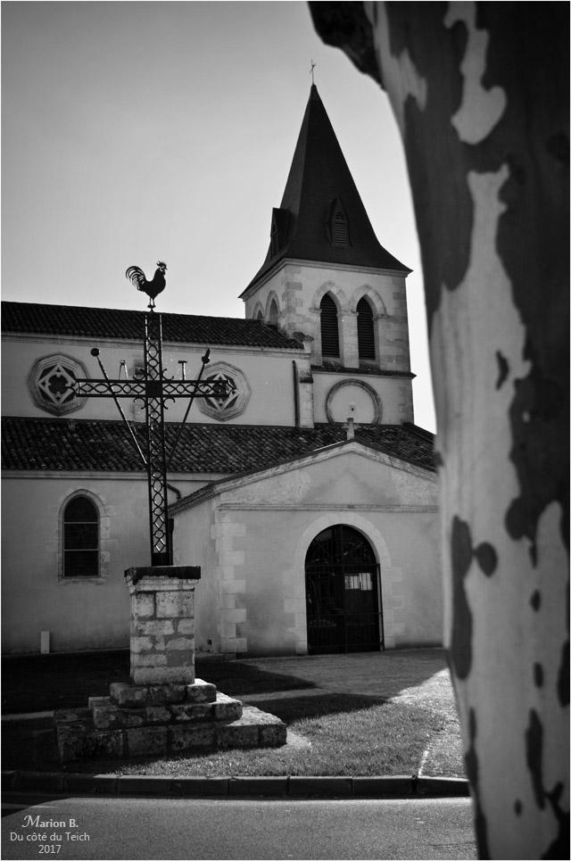 blog-dsc_42085-st-martin-et-croix-de-la-passion-mios-nb.jpg