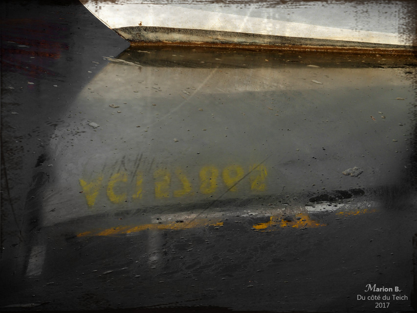 blog-pb170095-reflet-proue-pinasse-pa-nc.jpg