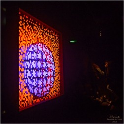 BLOG-DSC_43625-digital abysses Miguel Chevalier Bdx Bacalan